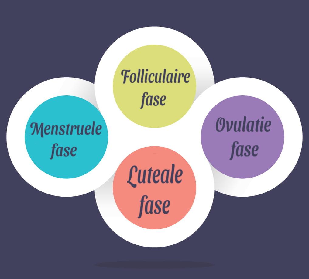 Fasen van de menstruatiecyclus menstruatie acupunctuur