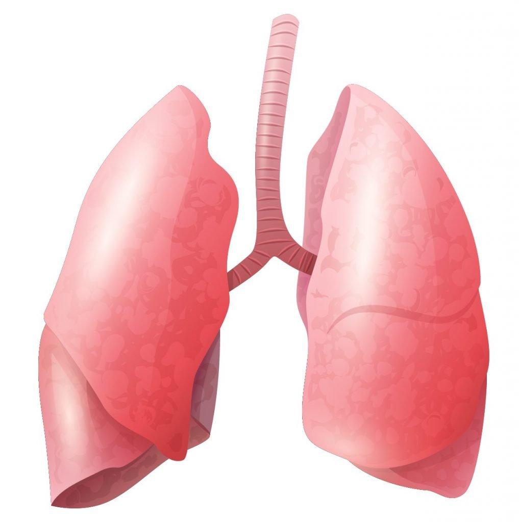 Vermoeidheidssyndroom longen