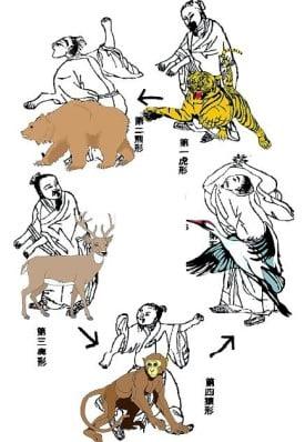 vijf dieren