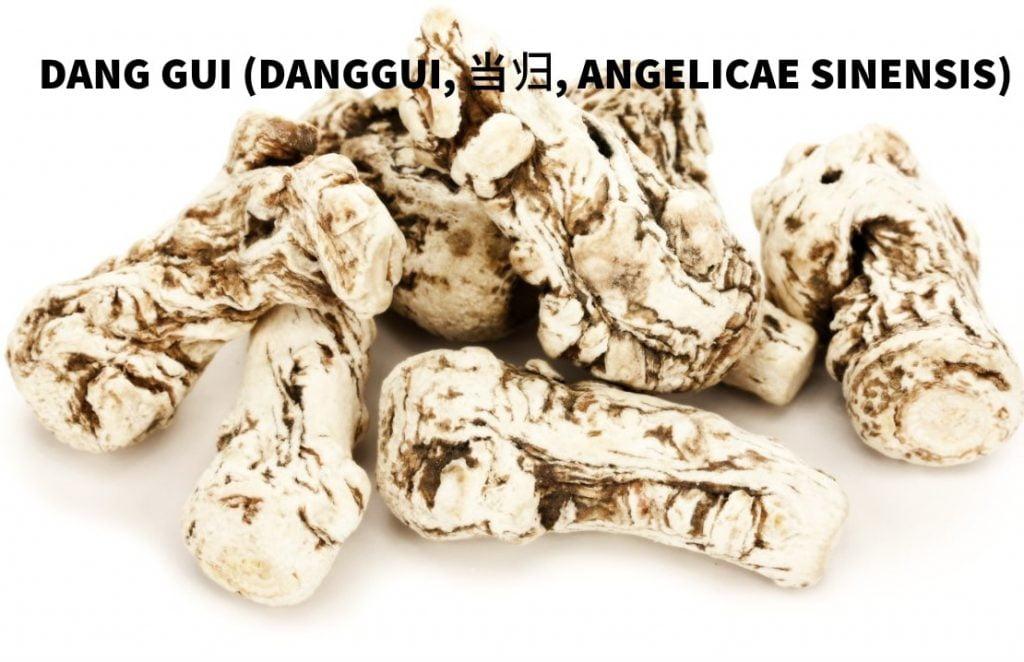 Dang Gui (当归)
